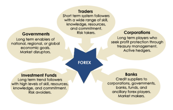 Forex Education with Forex Market Commentary